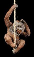 Orang-Utan Figur am Seil hängend - Cheeky Chap - Willow Hall niedlicher Affe