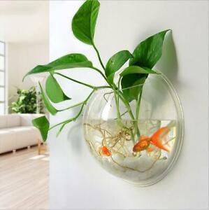 Wall Mounted Fish Tank Bowl Bubble Hanging Terrarium Goldfish Betta Aquarium