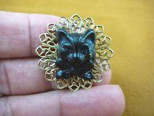 (CS28-19) little KITTY black cat kitten with bow CAMEO brass Pin Pendant brooch