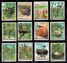 Cafes Gilbert Rare French Card Set 1935 Birds & Their Nests Oiseaux Sparrow Nids