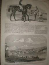 CORSE di Cavalli TERRA PROMESSA vincitore 2000 GHINEE & Ponte sul Po TORINO ITALIA 1859