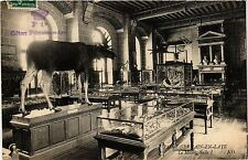CPA   Saint-Gerlain-Laye - Le Muse Salle I.      (452968)