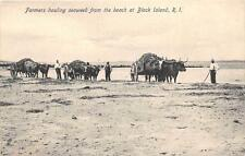 CPA ETATS UNIS D´AMERIQUE USA RHODE ISLAND FARMERS HAULING SEAWEED FROM THE BEAC