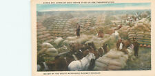 CHINA - ACRES OF SOYA BEANS READY TO SHIP MANCHURIA RAILWAY - OLD POSTCARD VIEW