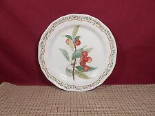 "Noritake China Gourmet Harvest 7941 Salad Plate 8 1/4"""
