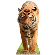 TIGER CARDBOARD CUTOUT Standee Standup Poster Prop Wild Cat Animal FREE SHIPPING