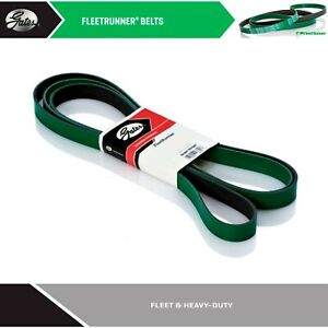 GATES Heavy Duty Serpentine Belt for 2008 MACK GU8 L6-10.8L