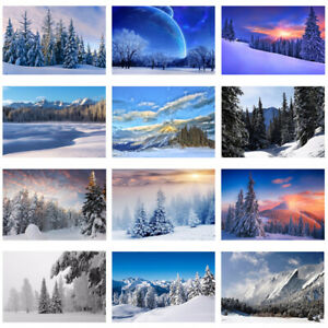 Winter Snow View Photography Background Studio Photo Backdrop Christmas Trees