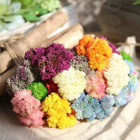 New Artificial Silk Fake Flowers Succulents Hydrangea Wedding Bouquet Home Decor