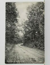 PA Main Drive to Buck Hill Inn Pennsylvania Postcard N14