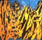 """Donald Sultan """"Forest Fire"""" Modern Art 35mm Glass Slide"""