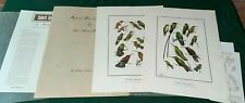 """(2) Bird Prints by Don Eckelberry """"The Frame House Gallery"""" VTG Hummingbirds"""