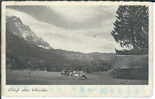 Ansichtskarte Auf der Weide mit Ziegen - Kupfertiefdruckkarte - 1941
