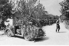 WW2 - Marseille - prisonniers allemands en août 1944