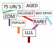 . info Domain Name Services