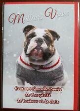 """H2) Carte """"Meilleurs Voeux"""" photo de chien + enveloppe - Neuf"""