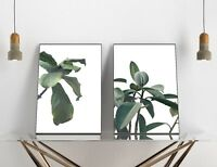 Set of 2 Wild Indoor Plants Green White Leaves Home Decor Poster Prints Wall Art