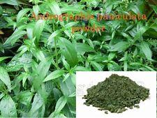 3 oz Andrographis paniculata powder Kalmegh Natural ....