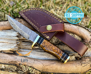 CUSTOM HAND FORGED DAMASCUS Steel Hunting Knife W/Resin & Brass Guard Handle New