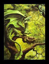 Imagen 3d-bild Anne Stokes Dragón - bosque DRAGON - FANTASY Impresión Póster