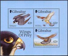 "GIBRALTAR 1999 ""Wings of Prey""/RAPACES/Peregrine Falcon/Faucon/oiseaux M/S n42150"