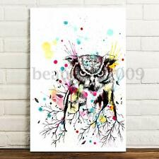 Abstract Focusing Owl Canvas Prints Paintings Picture Wall Art Decor Unframed