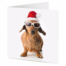 Dachshund sausage dog Christmas card 'Have a Merry Little Christmas'