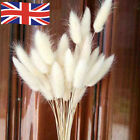 30pcs Natural Rabbit Bunny Tail Grass Bouquets Wedding Dried Flowers Decor Uk
