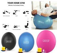 Davina Gym ball 65 cm Brand New Exercice Yoga Fitness Inc pompe à main-RRP £ 14.99