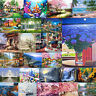 Landscape DIY Oil Acrylic Painting Kit Paint By Numbers Adult Children Beginner