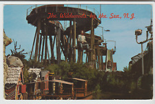 Wildwood by the Sea, Flume Ride & Jungleland Hunt's Pier, N.J., Postcard