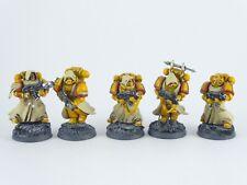 5 x Fallen - Veteranen der Imperial Fists - teilweise gut bemalt -