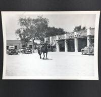 Vintage Real Photo Garage Parts Auto Old Car Truck Livery Horse Wrecker Man 8