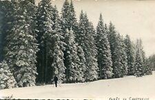 Isère Carte PHoto d'une Forêt à identifier en Chartreuse Skieur