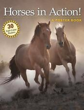 NEW - Horses in Action!: A Poster Book (Poster Books)