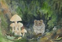 Vole painting watercolour mouse original animal wildlife toadstools rodent