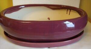 """Lovely Bonsai Pot & Saucer 15"""" long NEW, Purple"""