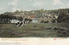 Rauschen Swetlogorsk AK um 1900 Abschiedsblick Kühe Samland Russland 1603241