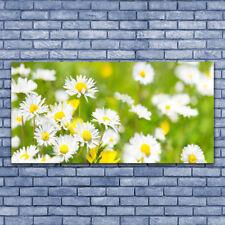 Tableau Impression Image sur Plexiglas® 140x70 Floral Marguerite