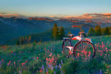 Gore Range by Todd Van Fleet Bike Cycling Bicycle Flowers Canvas Giclee 24x36