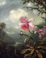 Huge Oil painting Martin Johnson Heade - Hummingbird Perched on an Orchid Plant