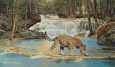 """50"""" WALL JACQUARD WOVEN TAPESTRY Leopard near Water WILD CAT ANIMAL EURO PICTURE"""