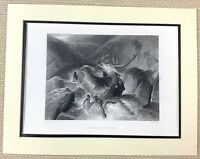 Edwin Landseer Antique Engraving Print Death of Stag Hunting Deer Stalking 1880