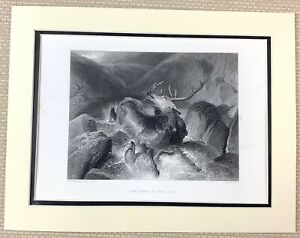 Edwin Landseer Antique Engraving Print Death of Stag Hunting Deer Stalking 1880