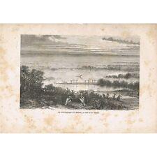 Lac TIMSAH et la Forêt submergée d'EL-AMBACH près de Suez Gravure du XIXè Siècle