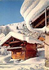 BR21409 Le Mazot des neiges France