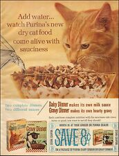 1965 Vintage ad for Purina`Cat Food Photo Orange Tabby Cat (111715)