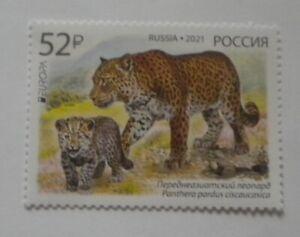 Russia 2021 leopard Europa CEPT MNH