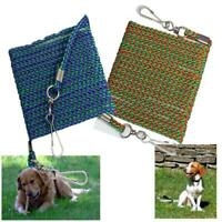 TIE OUT LINE ROPE CABLE GARDEN OUTDOOR SMALL PET DOG SAFETY LEAD GROUND OR STAKE