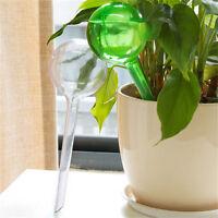Automatic Watering Device Houseplant Plant Pot Bulb Globe Garden Waterer EF